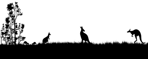 silhouette of kangaroos koala and trees