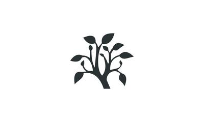 plant garden vector icon