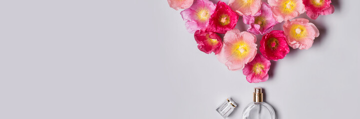Women's perfume bottle and pink mallow flowers. Minimalism beauty concept
