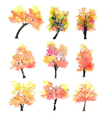 Collection of nine watercolor trees on white background, watercolor hand painted