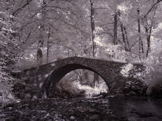 infrared photography - ir photo of a  bridge in the nature