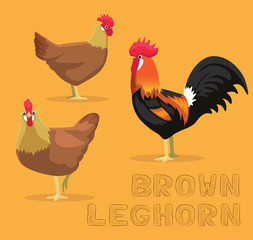 Chicken Brown Leghorn Cartoon Vector Illustration