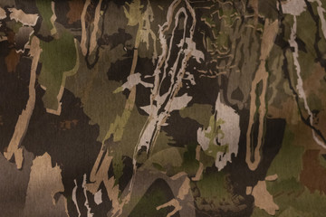 A Woodland Camouflage Pattern