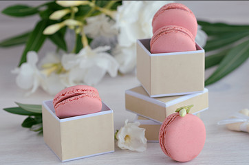 Pink rasberry macarons in the gift box on wooden background. French dessert macaroons and white flowers for best present or surprise.