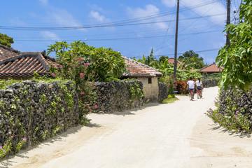 Wall Mural - 竹富町の町並み