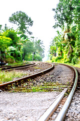 A winding railway running through the jungle in Sri Lanka.