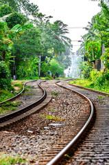 A winding railway in Sri Lanka, running through the jungle.