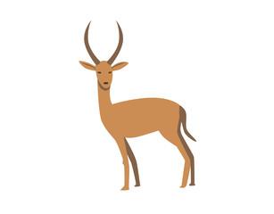 Gazelle. Flat vector illustration. Isolated on white background