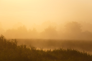 Thick fog in morning sunlight over the river