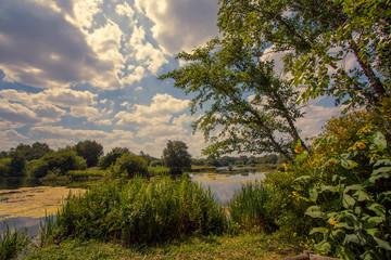 Natural parkland fishing lake. Idyllic English countryside summer travel destination