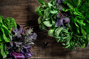 Variety of fresh organic herbs on wooden background. Freshly harvested herbs including basil, arugula. Top view. Copy space.