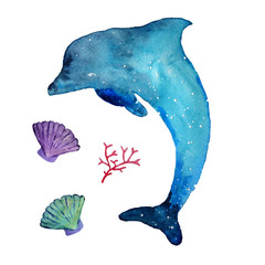 Watercolor dolphin and sea inhabitants,  isolated on a white background. Hand drawn illustration.