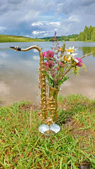 Golden alto saxophone on a background of nature. Original saxophone with a bouquet of summer summer flowers. Art. Cover for jazz. Reflection in water