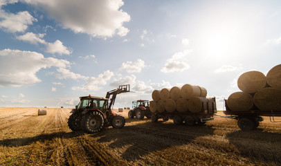 Wall Mural - A tractor collecting straw bales