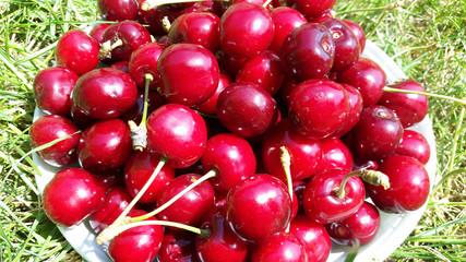 sweet red cherries closeup