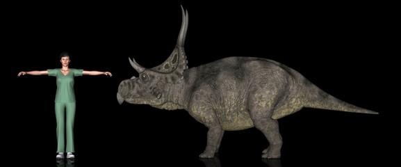 恐竜縮尺図・ディアブロケラトプス