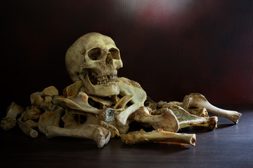 Skull on pile of bones put on the wooden plank which has dim light on the dark wall background