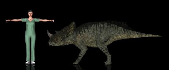 恐竜縮尺図・ブラキケラトプス