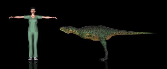 恐竜縮尺図・アウカサウルス