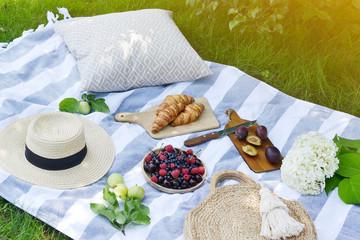 Picnic Instagram Style Food Fruit Bakery Berries Green Grass Summer Time Rest Background Sunlight