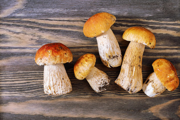 Forest mushrooms close up. Boletus edulis on wooden textural surface. Five small raw mushrooms on old wood. Top view.