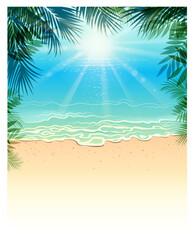 blank tropic beach