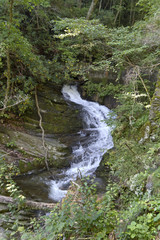 Mountain Waterfall Springs From Underground