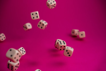 dice in fall on magenta background