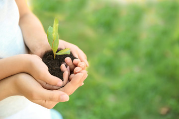 Woman and her child holding soil with green plant in hands on blurred background. Family concept