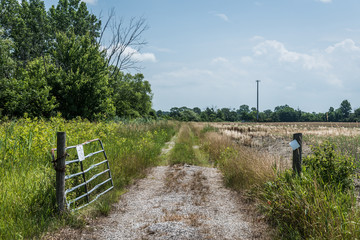 old farm road with a garte