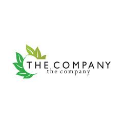 leaf logo  ideas design vector illustration graphic on background