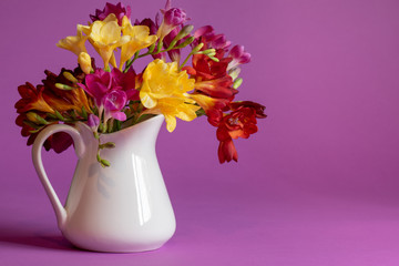 White pitcher filled with vividly colored freesia flowers on a purple background.