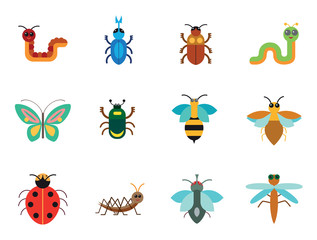 Beetle Icon Set. Ladybird Bee Beetle Mosquito Fly Brown Mite Butterfly Blue Beetle Mite Caterpillar Pink Worm Cute Caterpillar Ant