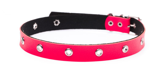 red leather dog collar isolated on white background Fotobehang
