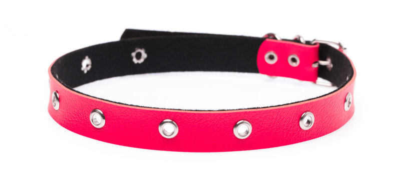 red leather dog collar isolated on white background