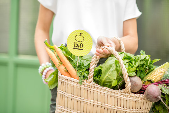 Holding bag full of fresh organic vegetables with green sticker from the local market on the green background