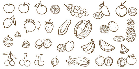 Mix fruits and tropical fruits collection, line art vector illustration in cartoon style