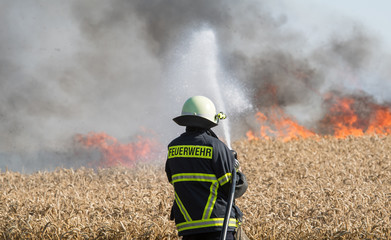 Feldbrand, brennendes Weizenfeld