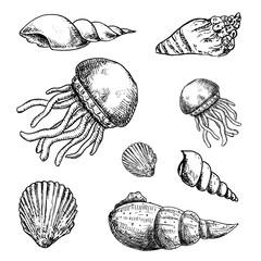Hand Drawn marine life doodles set. Sketch style icons. Decoration element. Isolated on white background. Flat design. Vector illustration