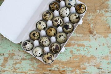 Frische Wachteleier im Pappcontainer, Eier von Wachteln in einer Packung aus Pappe