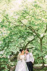 Half-length view of the cheerful newlyweds standing under the green tree.