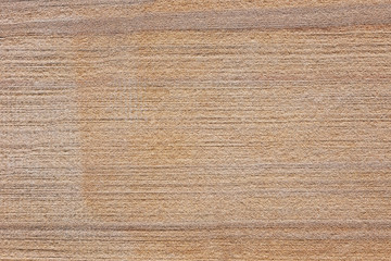 .Beautiful texture on a sandstone stone.