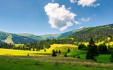 beautiful rural scenery in mountains. haystack on the grassy agricultural fields among the spruce forest on the hills