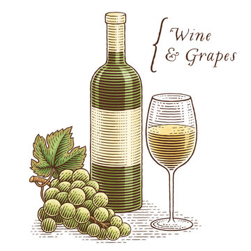 Wine bottle, glass of wine and grapes. Hand drawn engraving style illustrations. Isolated, on white background.
