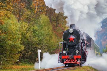 Vintage black steam locomotive train with wagons on railway.