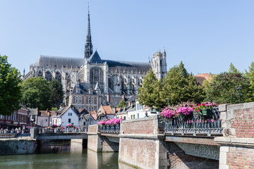 the cathedral of Amiens Fototapete