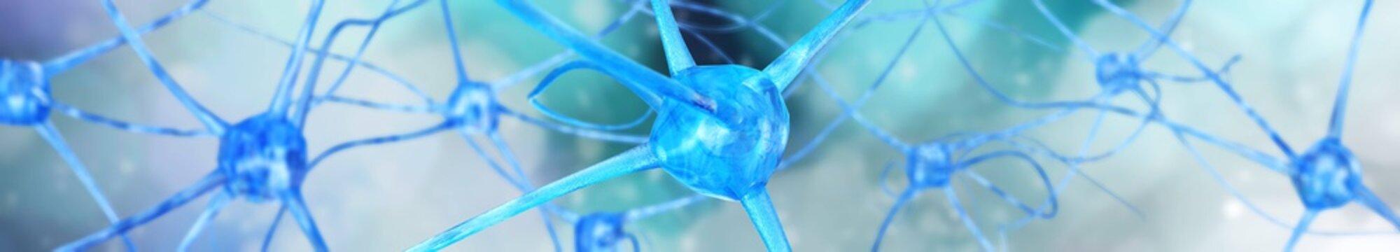 neuron, neural network, nerve node, nervous system, 3D rendering