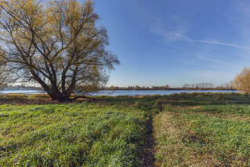 Hiking Path towards the River Rhine waterside at Urdenbacher Kaempe at Duesseldorf / Germany
