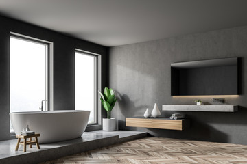 Luxury gray bathroom corner