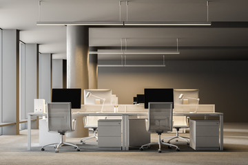 Spacious gray wall open space office